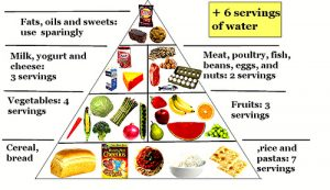 Food pyramid for a balanced diet